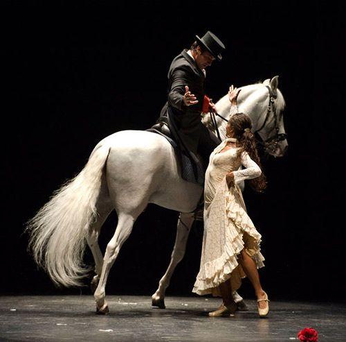 flamenco ecuestre Baile de caballo y flamenco