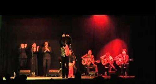 Conjunto de flamenco de ocho músicos