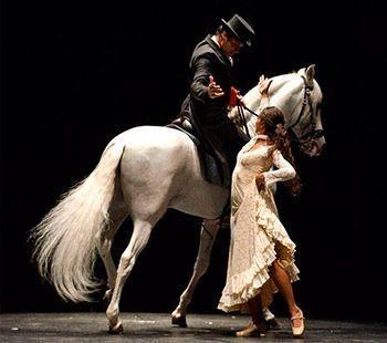 contratar artistas para eventos flamenco-fusion-foto flamenco-ecuestre-foto